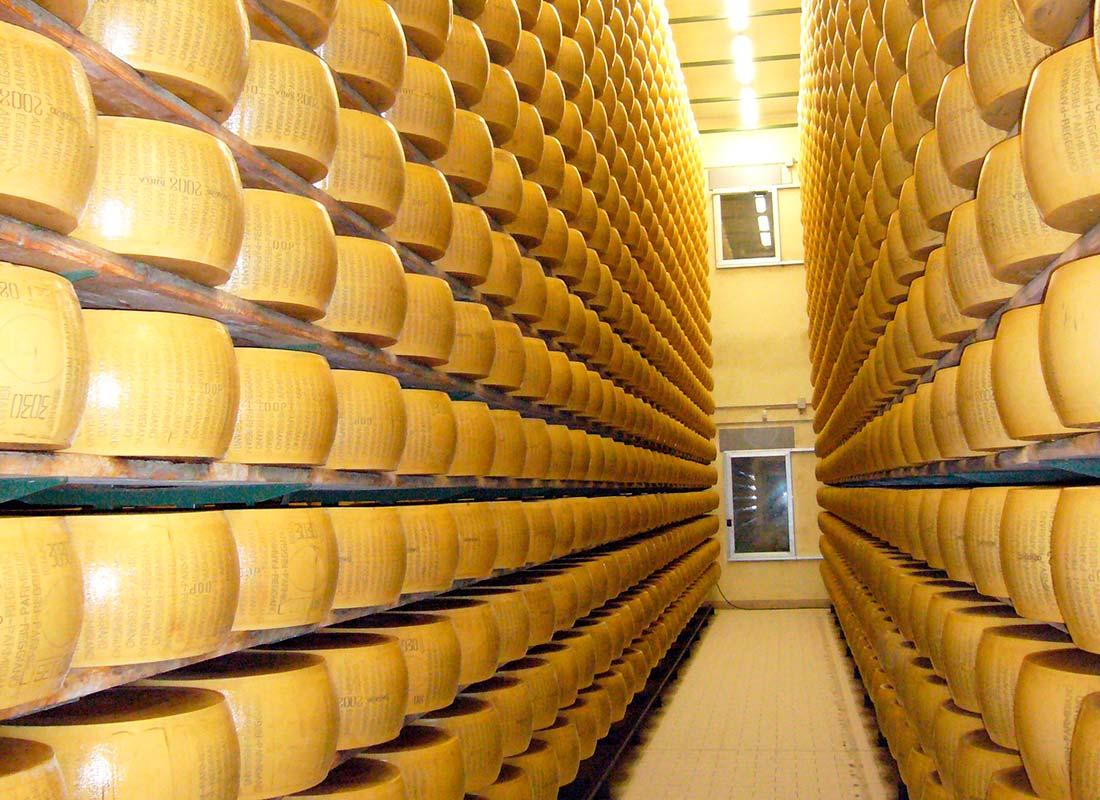 Cámara de refrigeración para conservación y curación de quesos