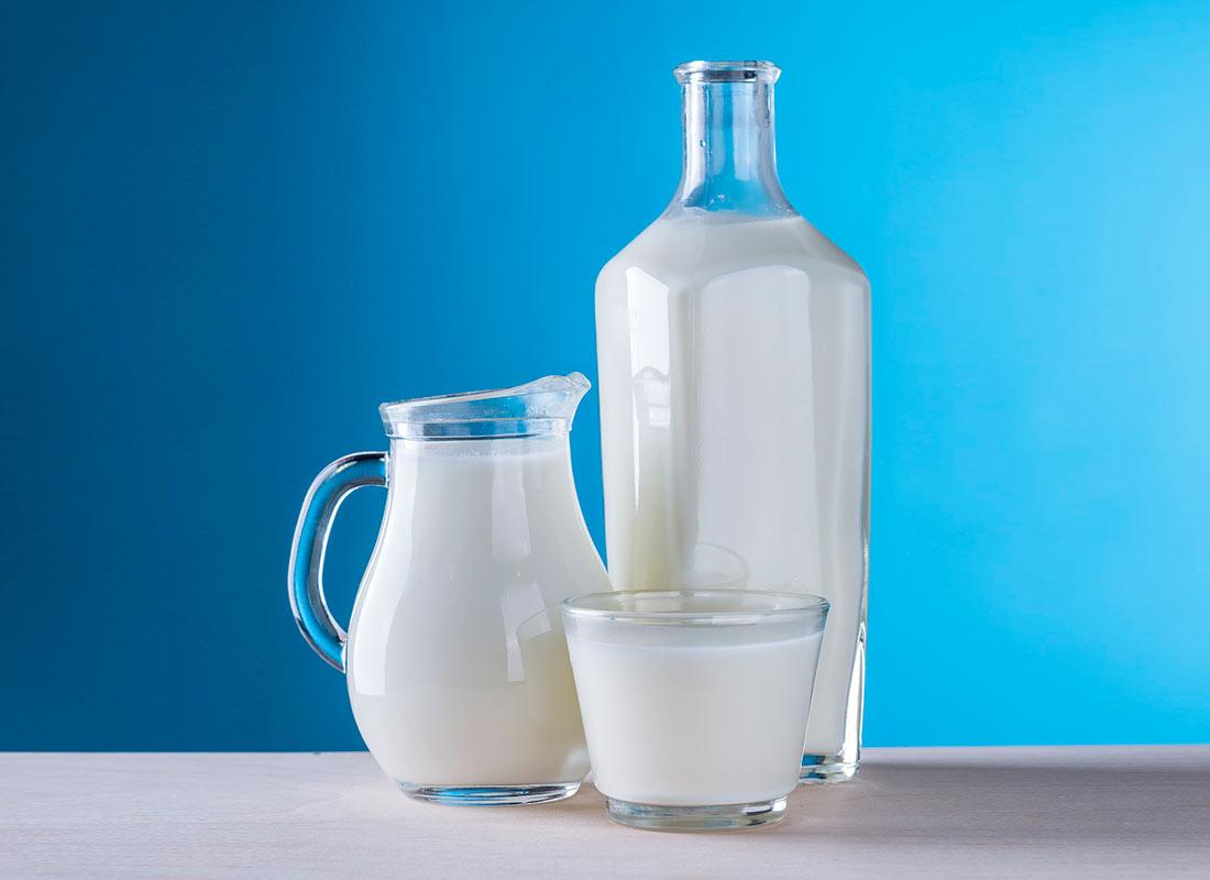 Productos lácteos y derivados refrigerados