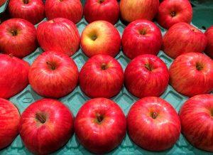 Fruta envasada durante proceso de refrigeración