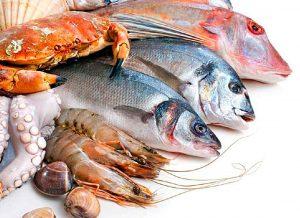 Refrigerados para pescado, marisco y productos de mar