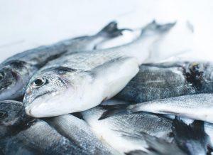 Pescado fresco en cámara frigorífica