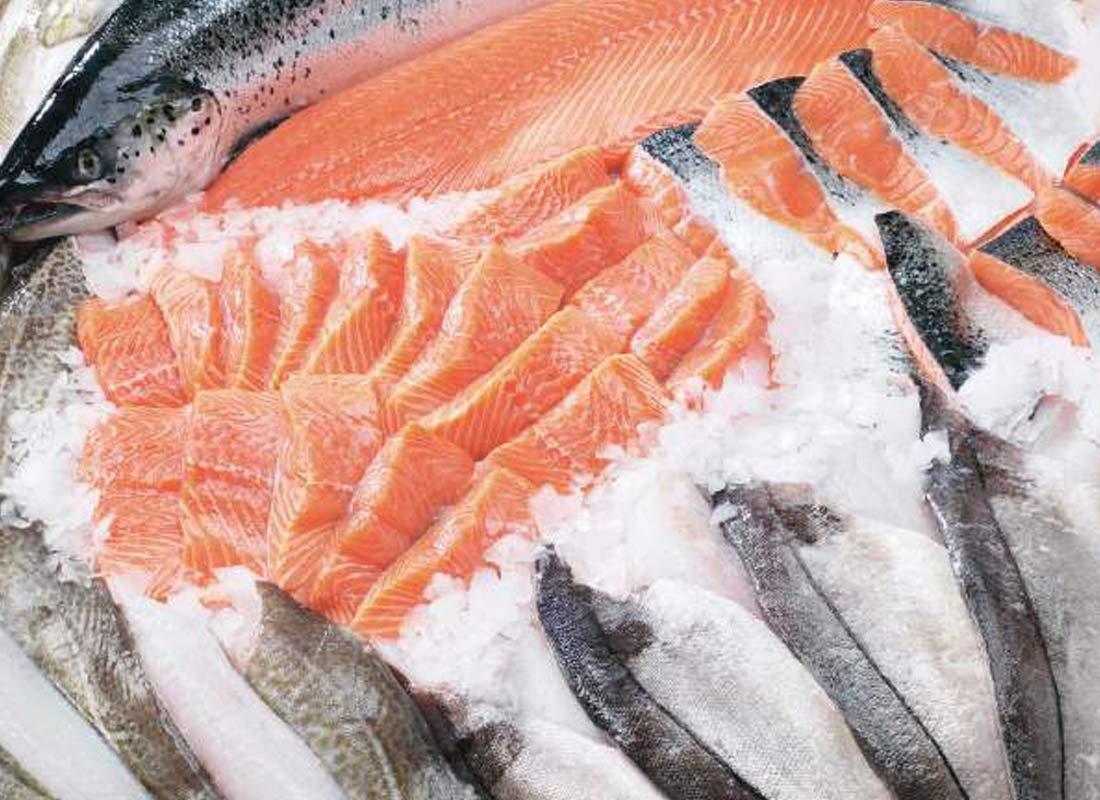 Refrigeración y conservación de pescados y mariscos