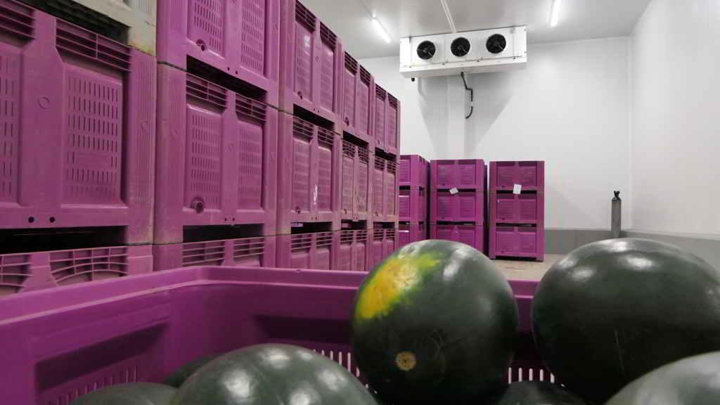 Cámara positiva para almacenamiento de frutas